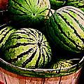 Bushel Full Of Melons by Selma Glunn