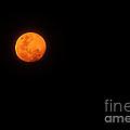 Bushfire Moon 2 by Kaye Menner