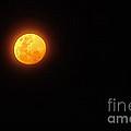 Bushfire Moon by Kaye Menner