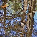 Reflection In Bushkill Falls  by Nili Tochner