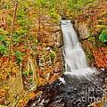 Bushkill Falls Pa by Nick Zelinsky