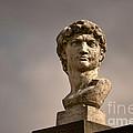 Bust Of Apollo by Nadalyn Larsen