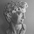 Bust Of Michaelangelo's David by Siera Anthony