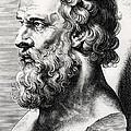 Bust Of Plato  by Lucas Emil Vorsterman