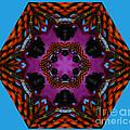 Busy  Bee Kaleidoscope by Judy Wolinsky