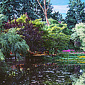 Butchart Gardens Is A Group Of Floral Display Brentwood Bay by David Zanzinger