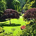 Butchart Gardens by Kirt Tisdale