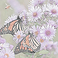 Butterflies And Bee by Susan McMenamin