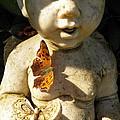 Butterflies and Cherub
