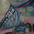 Butterflies And Spheres by Marian Hebert