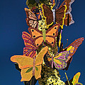 Butterflies On A 2015 Rose Parade Float 15rp047 by Howard Stapleton