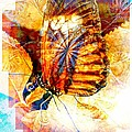 Butterfly 6 by Amanda Moore
