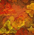 Butterfly Abstract 2 by David Dehner