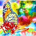 Butterfly Abstracted by Alice Gipson