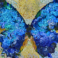 Butterfly Art - D11bb by Variance Collections