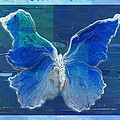 Butterfly Art - Dream It Do It - 99t02 by Variance Collections