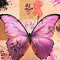Butterfly Art - Sr51a by Variance Collections