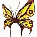Butterfly by Daniel P Cronin