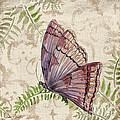 Butterfly Daydreams-b by Jean Plout