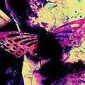 Butterfly Disintegration  by Jessica Shelton