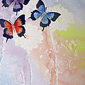 Butterfly Dream by Elvira Ingram