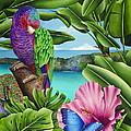 Butterfly Effect by Carolyn Steele
