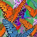 Butterfly Joy by Mary Armstrong