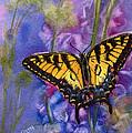 Butterfly by Katherine  Berlin