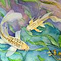 Butterfly Koi by BJ Canerday