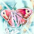 Butterfly On Flower 1 by Yury Malkov