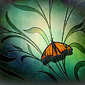 Butterfly Pause V1 by Peter Awax