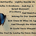 Butterfly Poem by Aimee L Maher ALM GALLERY