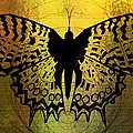 Butterfly Symmetry 2 by Dimitra Papageorgiou
