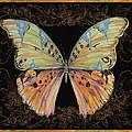 Butterfly Treasure-sofia by Jean PLout