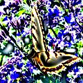 Butterfly With Purple Flowers 4 by April Patterson