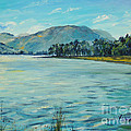 Buttermere Haystacks And Beyond by Sheila  Vickers