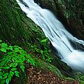 Buttermilk Falls Gorge by JG Coleman