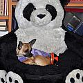Button And The Panda Bear by Jay Milo