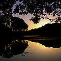 Buttonwood Sunset by Pablo Rosales