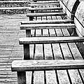Bw Bench by Christos Koudellaris