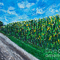 By An Indiana Cornfield The Road Home by Alys Caviness-Gober