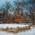 By Rattlesnake Creek by Denny Dowdy