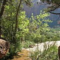 By The Emerald Pools - Zion Np by Christiane Schulze Art And Photography