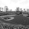 By The Right Field Foul Pole Bw by C H Apperson