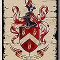 Byrne Coat Of Arms by Val Byrne