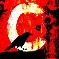 C Is For Crow by Carol Leigh
