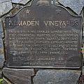 Ca-505 Almaden Vineyards by Jason O Watson