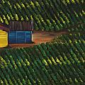 Cabbage Field by Alejandra Pineiro