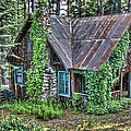Cabin At Cooks Station by SC Heffner