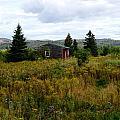 Cabin In Northern Minnesota by Lois Handel